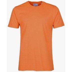 T-shirt με κοντά μανίκια Colorful Standard T-shirt Burned Orange [COMPOSITION_COMPLETE]